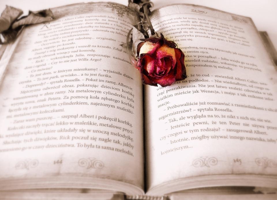 book-419589_960_720[1]