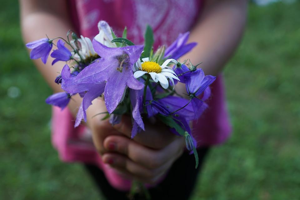 flowers-871514_960_720[1]